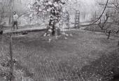 http://gardenpanorama.cz/wp-content/uploads/000022-170x115.jpg