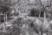 http://gardenpanorama.cz/wp-content/uploads/000030-170x115.jpg