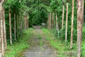 http://gardenpanorama.cz/wp-content/uploads/901-170x115.jpg