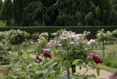 http://gardenpanorama.cz/wp-content/uploads/Charlottenhof-6-170x115.jpg