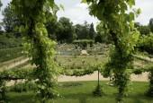 http://gardenpanorama.cz/wp-content/uploads/Charlottenhof-9-170x115.jpg