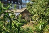 http://gardenpanorama.cz/wp-content/uploads/Chelsea_Physic_GardenIMG_9643_019-170x115.jpg