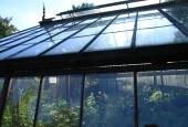 http://gardenpanorama.cz/wp-content/uploads/Chelsea_Physic_GardenIMG_9649_016-170x115.jpg