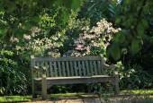 http://gardenpanorama.cz/wp-content/uploads/Chelsea_Physic_GardenIMG_9684_022-170x115.jpg