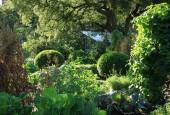 http://gardenpanorama.cz/wp-content/uploads/Chelsea_Physic_GardenIMG_9701_023-170x115.jpg
