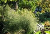 http://gardenpanorama.cz/wp-content/uploads/Chelsea_Physic_GardenIMG_9704_025-170x115.jpg