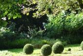 http://gardenpanorama.cz/wp-content/uploads/DSC09659-170x115.jpg