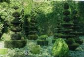 http://gardenpanorama.cz/wp-content/uploads/DSC09681-170x115.jpg