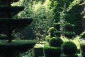 http://gardenpanorama.cz/wp-content/uploads/DSC09692-170x115.jpg