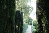 http://gardenpanorama.cz/wp-content/uploads/DSC09698-170x115.jpg
