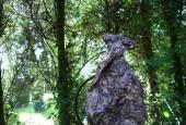 http://gardenpanorama.cz/wp-content/uploads/DSC09700-170x115.jpg