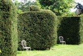 http://gardenpanorama.cz/wp-content/uploads/DSC09718-170x115.jpg