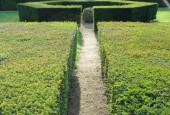 http://gardenpanorama.cz/wp-content/uploads/DSC09749-170x115.jpg
