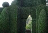 http://gardenpanorama.cz/wp-content/uploads/DSC09761-170x115.jpg