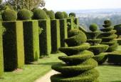 http://gardenpanorama.cz/wp-content/uploads/DSC09766-170x115.jpg