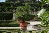http://gardenpanorama.cz/wp-content/uploads/DSCF0006-170x115.jpg