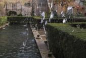 http://gardenpanorama.cz/wp-content/uploads/DSCN0426_1-170x115.jpg