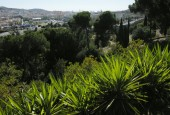 http://gardenpanorama.cz/wp-content/uploads/DSCN0614-170x115.jpg