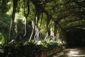 http://gardenpanorama.cz/wp-content/uploads/DSCN0638-170x115.jpg