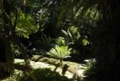 http://gardenpanorama.cz/wp-content/uploads/DSCN0651-170x115.jpg