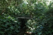 http://gardenpanorama.cz/wp-content/uploads/DSCN0663-170x115.jpg