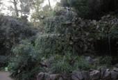 http://gardenpanorama.cz/wp-content/uploads/DSCN9619-170x115.jpg