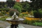http://gardenpanorama.cz/wp-content/uploads/DSC_0322-170x115.jpg