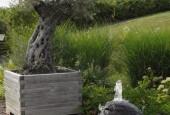 http://gardenpanorama.cz/wp-content/uploads/DSC_0346-170x115.jpg