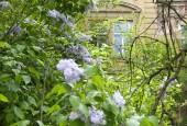 http://gardenpanorama.cz/wp-content/uploads/DSF0629-170x115.jpg