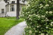 http://gardenpanorama.cz/wp-content/uploads/DSF0633-170x115.jpg