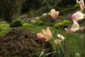 http://gardenpanorama.cz/wp-content/uploads/DSF0671-170x115.jpg