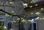 http://gardenpanorama.cz/wp-content/uploads/DSF0722-170x115.jpg