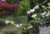 http://gardenpanorama.cz/wp-content/uploads/DSF0728-170x115.jpg