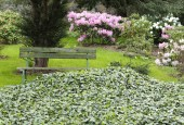http://gardenpanorama.cz/wp-content/uploads/DSF0765-170x115.jpg