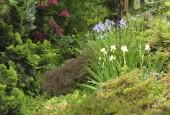 http://gardenpanorama.cz/wp-content/uploads/DSF1045-e1372270174391-170x115.jpg