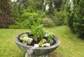 http://gardenpanorama.cz/wp-content/uploads/DSF1065-170x115.jpg