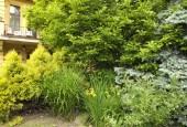 http://gardenpanorama.cz/wp-content/uploads/DSF1105-170x115.jpg