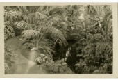 http://gardenpanorama.cz/wp-content/uploads/GP_pohledniceLEDNICE-170x115.jpg