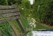 http://gardenpanorama.cz/wp-content/uploads/IMG_0129-170x115.jpg