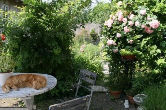 Kalendář otevřených zahrad