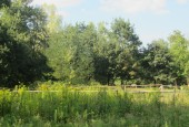 http://gardenpanorama.cz/wp-content/uploads/IMG_2044-170x115.jpg