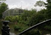 Botanická zahrada Amsterdam