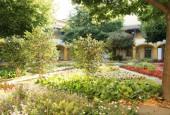 http://gardenpanorama.cz/wp-content/uploads/IMG_7076-170x115.jpg