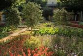 http://gardenpanorama.cz/wp-content/uploads/IMG_7083-170x115.jpg