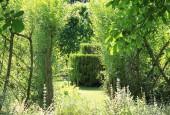 http://gardenpanorama.cz/wp-content/uploads/IMG_7121-170x115.jpg