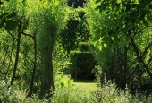 http://gardenpanorama.cz/wp-content/uploads/IMG_7144-170x115.jpg