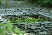http://gardenpanorama.cz/wp-content/uploads/IMG_7173-170x115.jpg