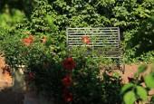 http://gardenpanorama.cz/wp-content/uploads/IMG_7203-170x115.jpg