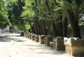 http://gardenpanorama.cz/wp-content/uploads/IMG_7404-170x115.jpg