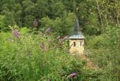 http://gardenpanorama.cz/wp-content/uploads/IMG_8663-170x115.jpg